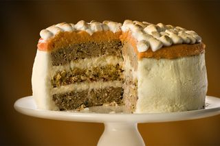 Thanksgiving-meal-cake-10705-1289237882-11